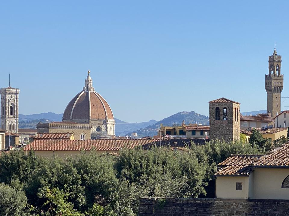 View of Florence structures from the Boboli gardens