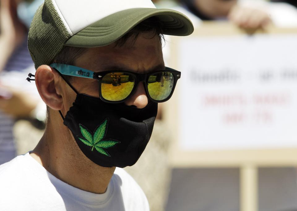 A protester wears black mask with green pot leaf image along with sunglasses and a hat