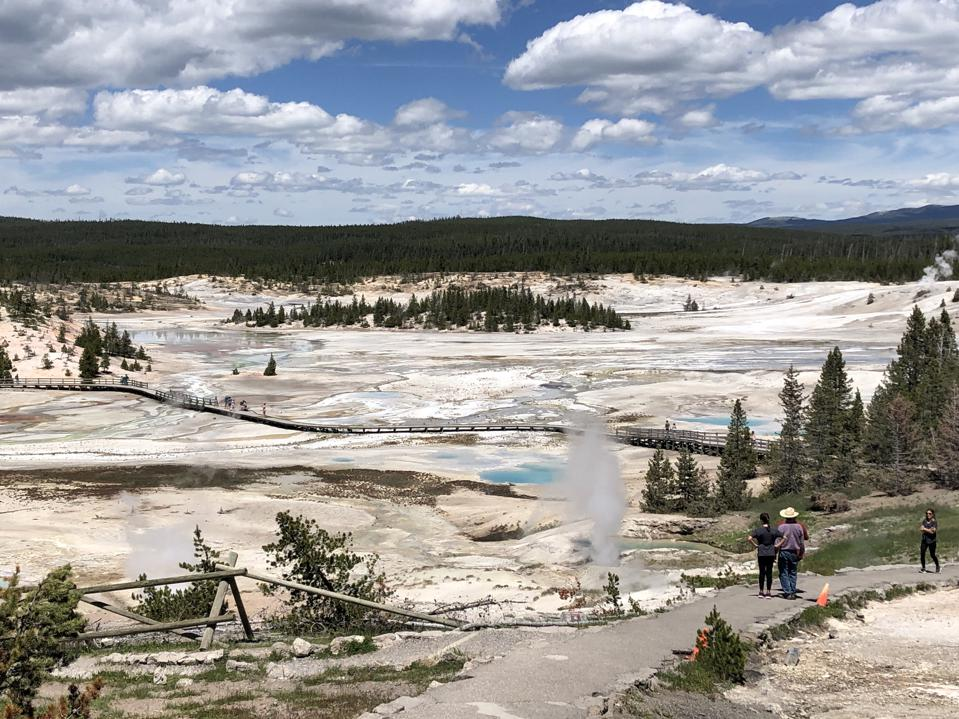 Geysers and crystal-blue pools in Porcelain Basin, Yellowstone National Park.