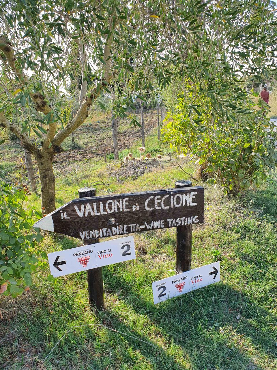 Signs point the way to wineries for Vino Al Vino wine festival in Panzano in Chianti Italy