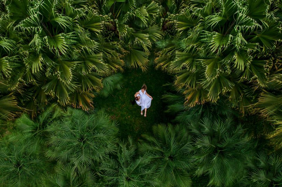 Prize winning photo of Wedding couple surrounded by nature taken with drone.