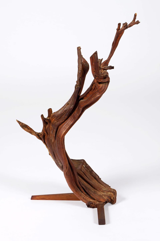 George Nakashima, 'Mounted Bitterbrush, ca 1942, Idaho. Bitter brush and walnut, 24 x 15 x 10 inches, collection of Mira Nakashima.