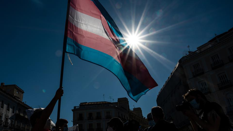 Demonstrator waving the Trans flag attends a protest where...