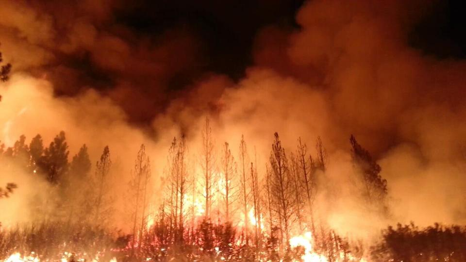 The Rim Fire in the Stanislaus National Forest, California