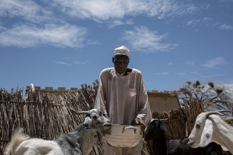Herders in the Diffa region of Niger.