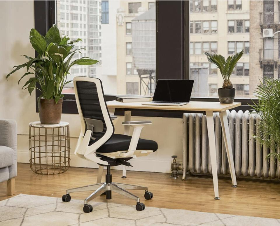 The Branch Ergonomic Chair sits in a bright office space in front of an airy desk.
