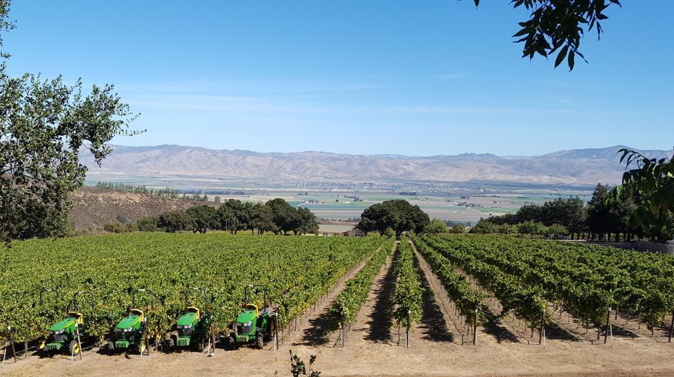 vineyards, mountains, California, Monterey County