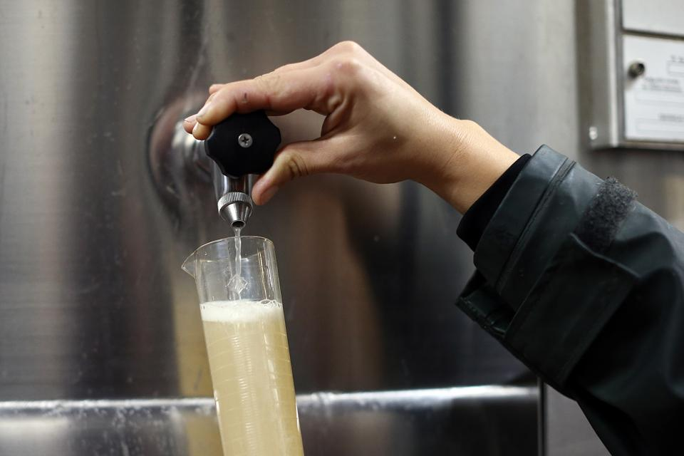 Wine Producers Set To Increase As The Market For British Wine Flourishes