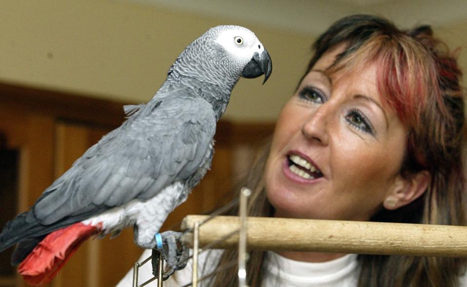 Jacki Burnett Parrot