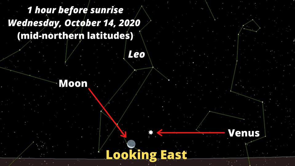 The Moon will be 1% alongside the bright planet Venus.