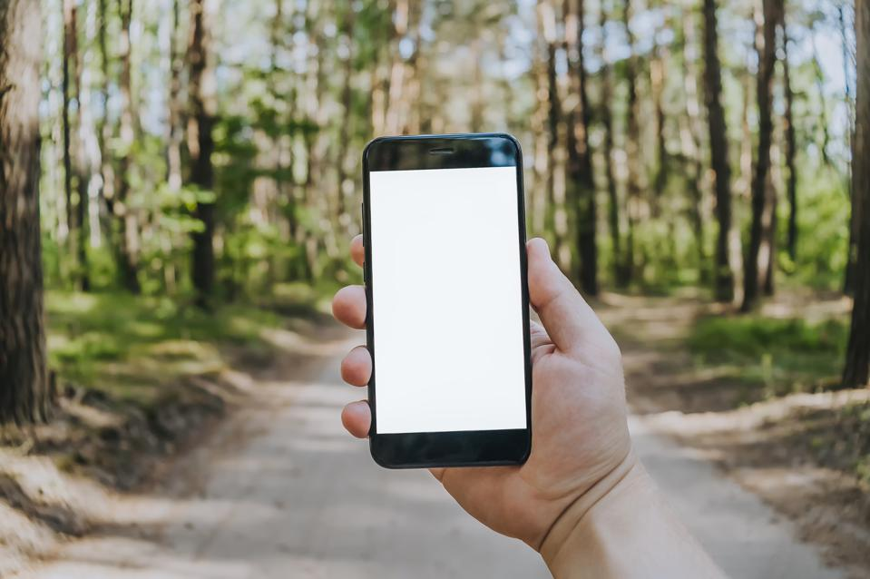 Mock up smartphone in the hands of a man in the forest, against a background of trees. Concept on the theme of travel outdoor recreation.