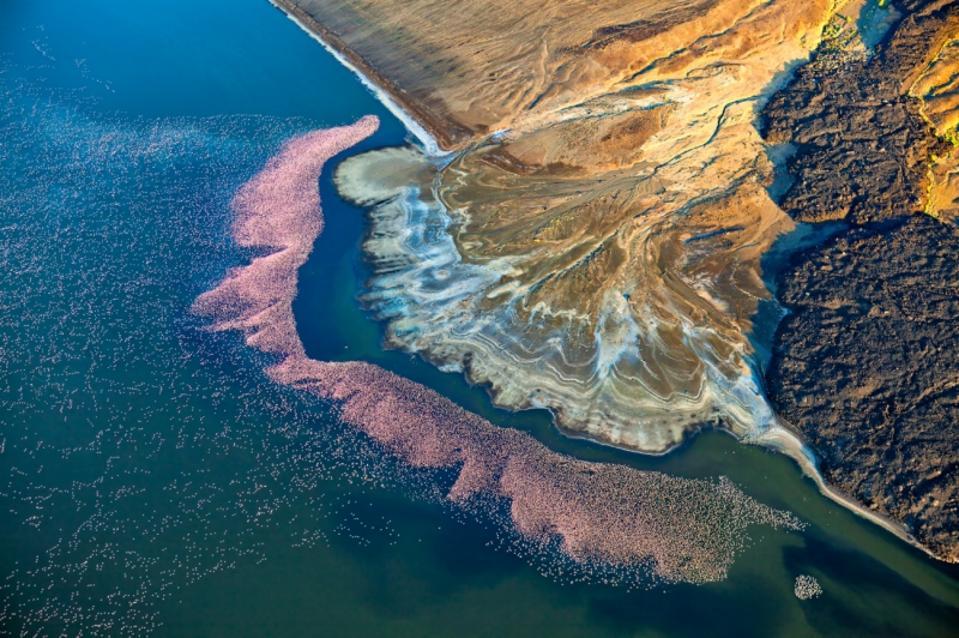 Siena Drone Photo Awards: Flamingos at Lake Logipi