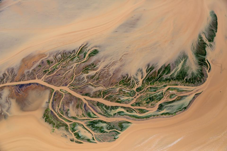Siena Drone Photo Awards, Delta design southern Ewaso Ngiro River delta, Kenya.
