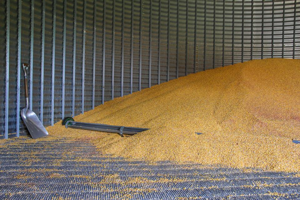Grain Bin half filled with corn
