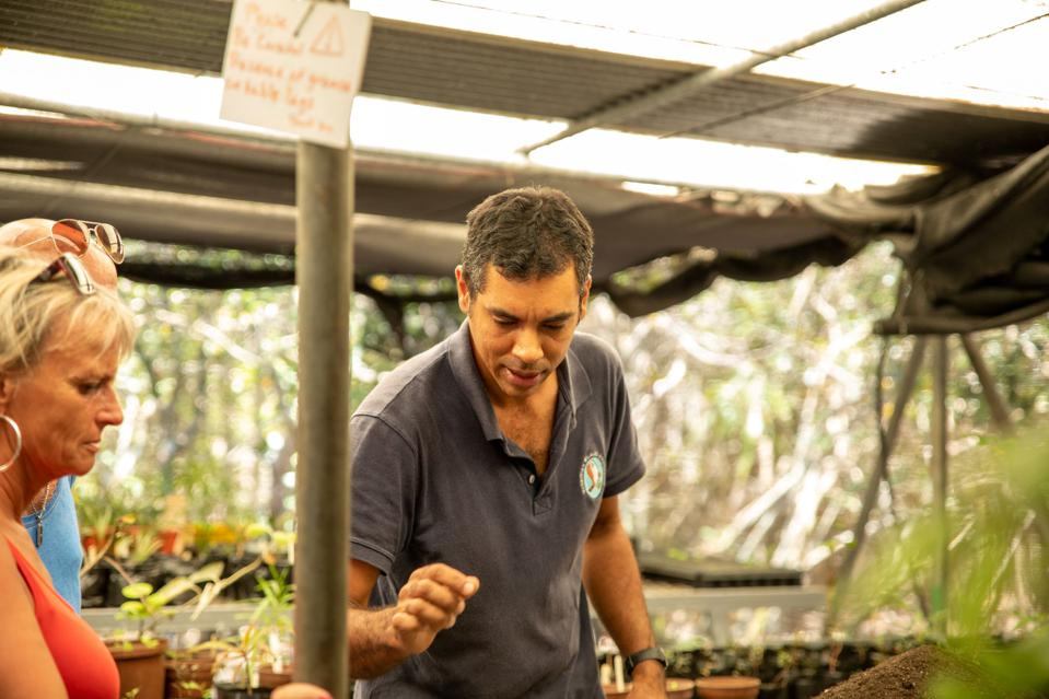 MWF Horiculturalist, Pascal Mucktoom, in the Ile aux Aigrettes nursery receiving visitors