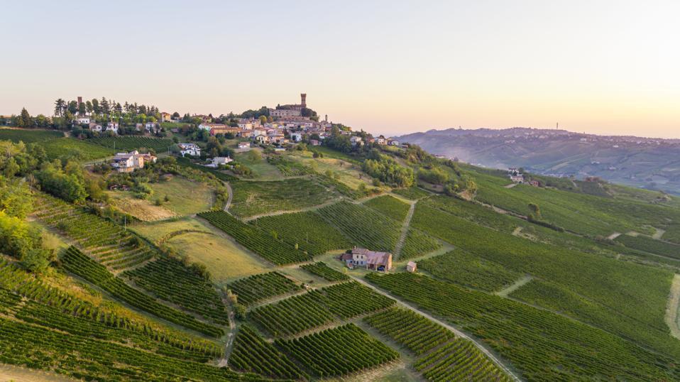 Castello di Cigognola and Vineyards