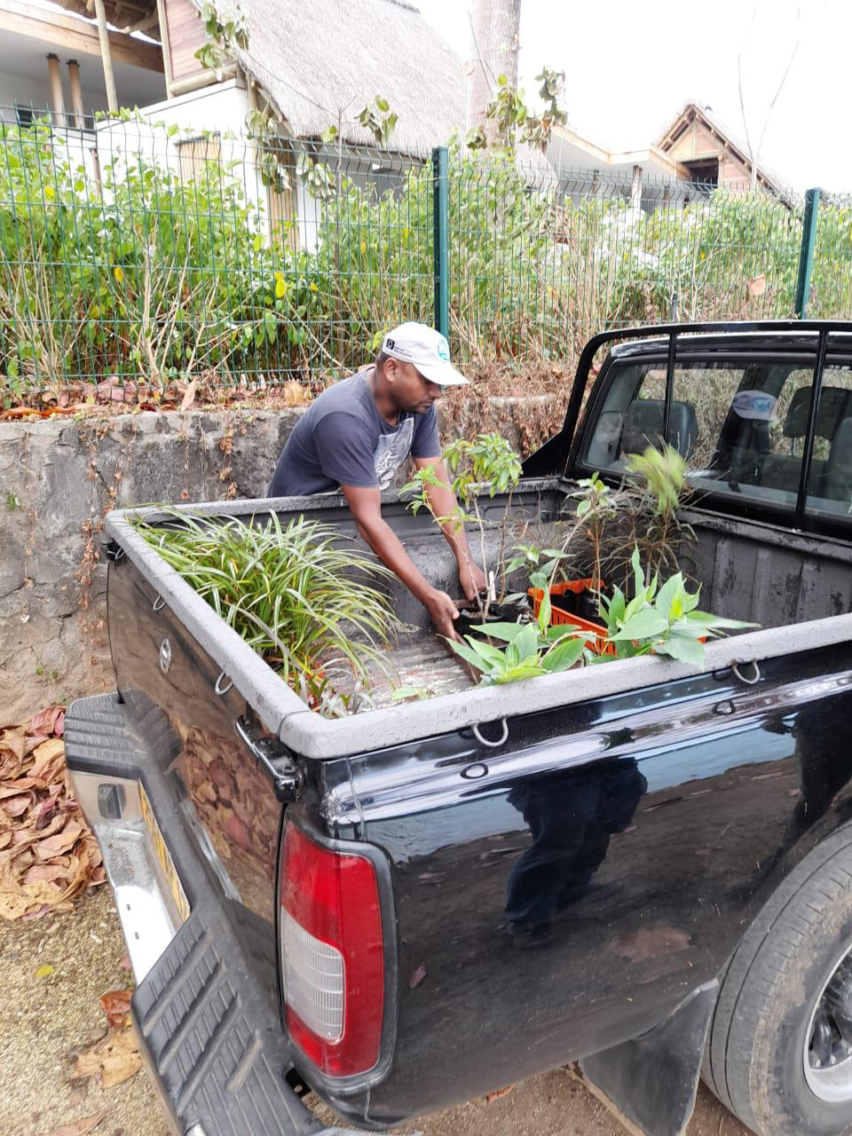 8 Aug 2020: transportation of rare plants to the Government's Ministry of Forestry's nurseries