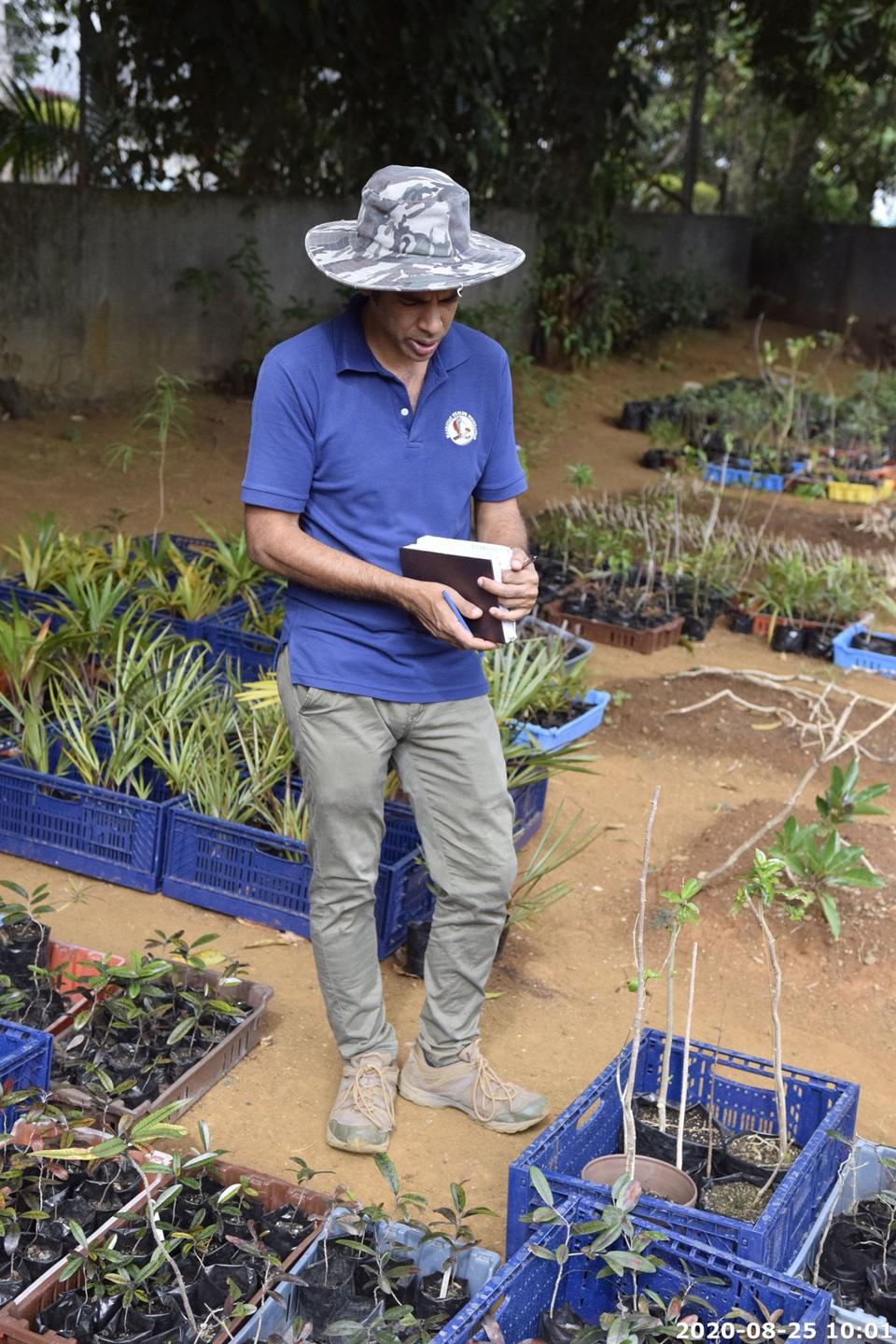 25 Aug 2020: careful monitoring of the growth of all the plants following the transfer, takes place on a regular basis