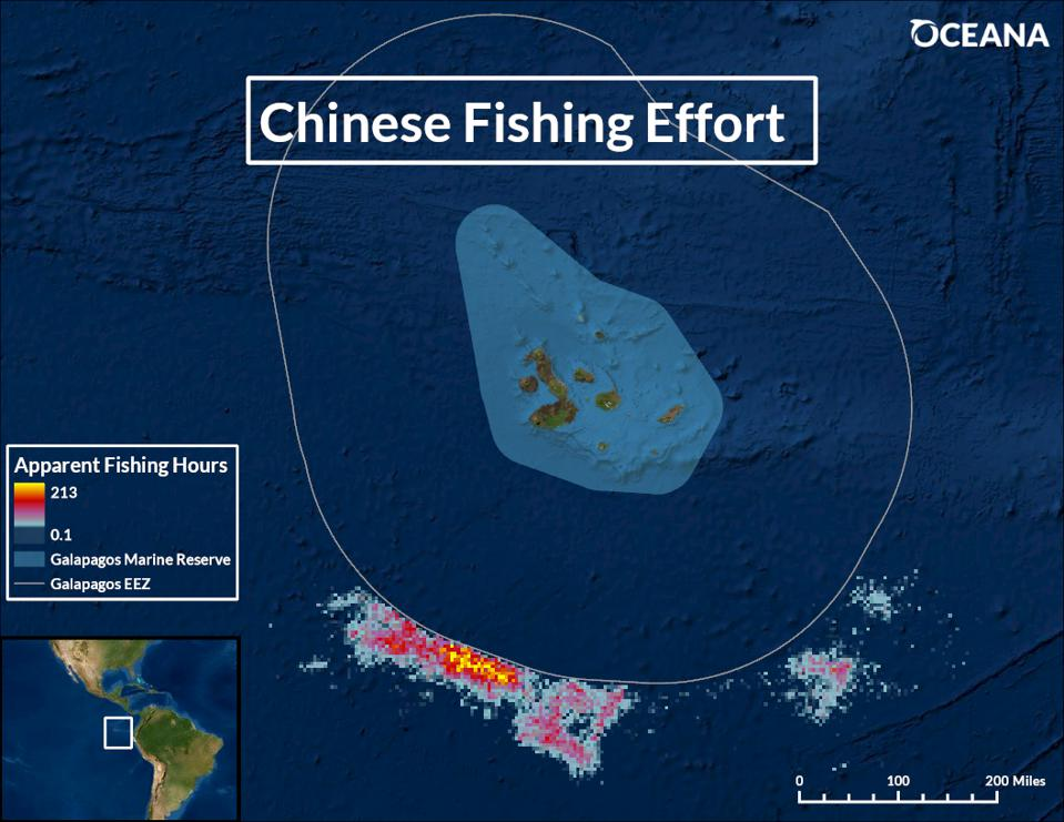Map of Galapagos Islands with Chinese fishing vessels shown as multicolored dots.