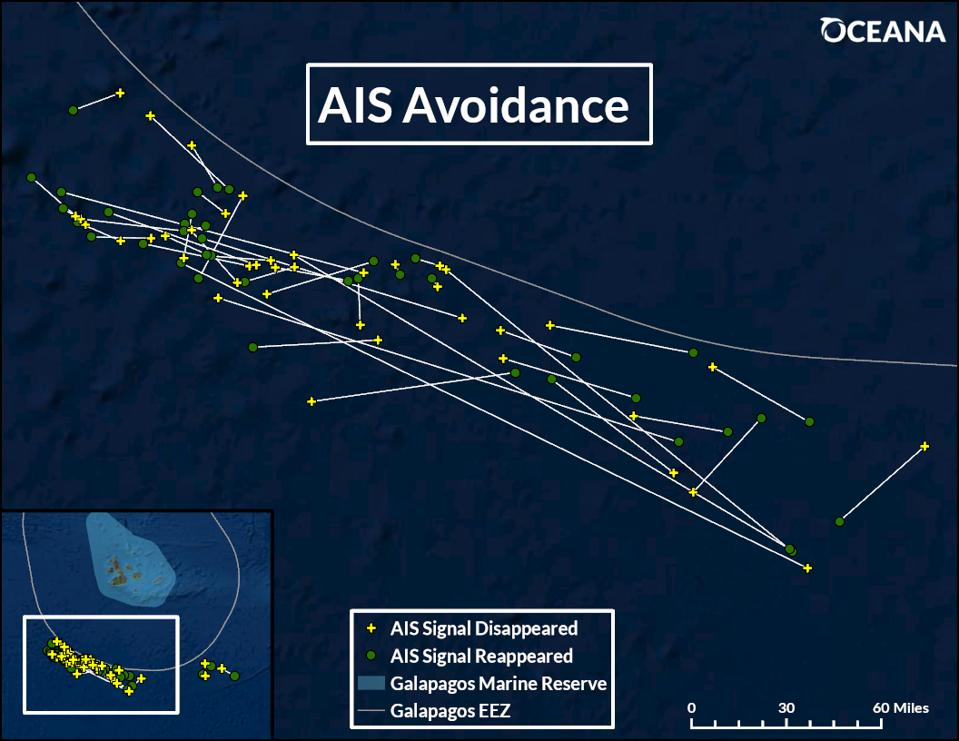 Map of shipping vessels near galapagos islands, showing AIS avoidance behavior.