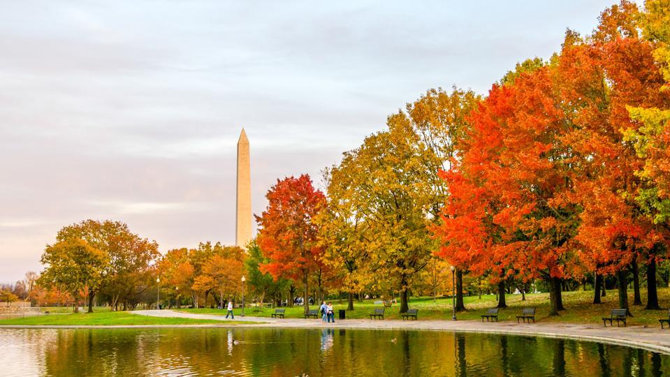 Fall foliage Washington Monument D.C. travel safe guide road trip capital