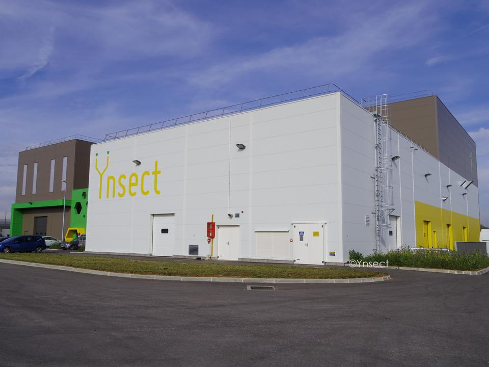 Ÿnsect will be the largest vertical and insect farm in the world when complete