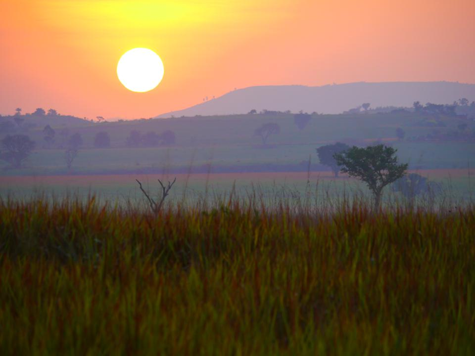 In an orange sky, the rising sun looks large on the horizon. Also in the photo are savanna and several trees, with a hill in the background.