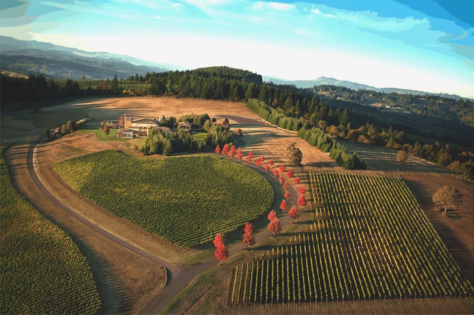 The Allison Inn & Spa aerial view.