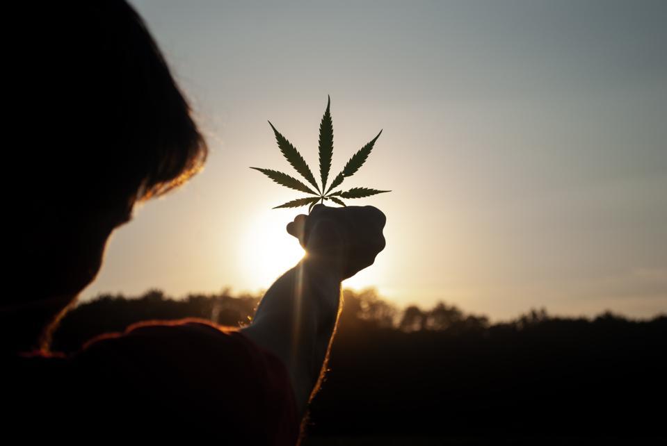 Oregon's Rep. Blumenauer Calls For Supreme Court To Review Historic Cannabis Lawsuit