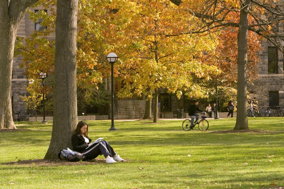 Young female student sitting under tree on campus