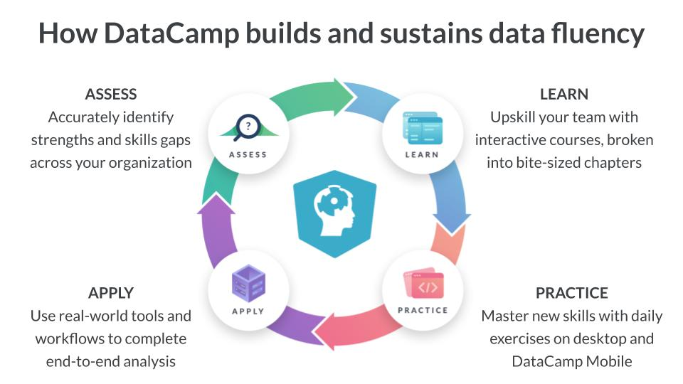 Learning cycle from Datacamp