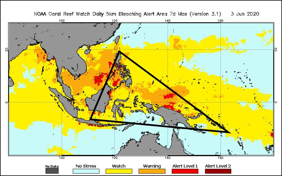 Black triangle outlines ″coral reef triangle″ spanning southeast Asia