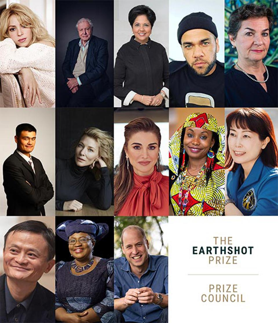 The Earthshot Prize Council