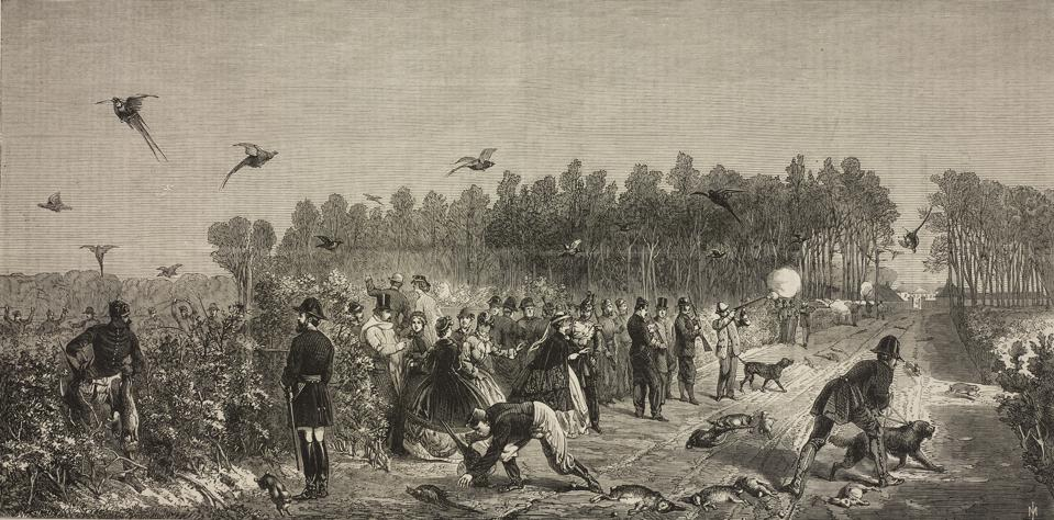 A shooting party at Compiegne