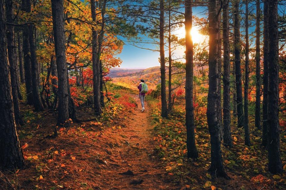 best fall foliage Michigan Hiking Escarpment Trail, Porcupine Mountains