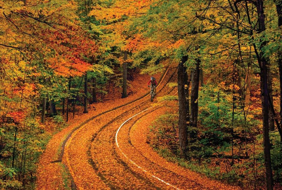 best fall foliage Michigan