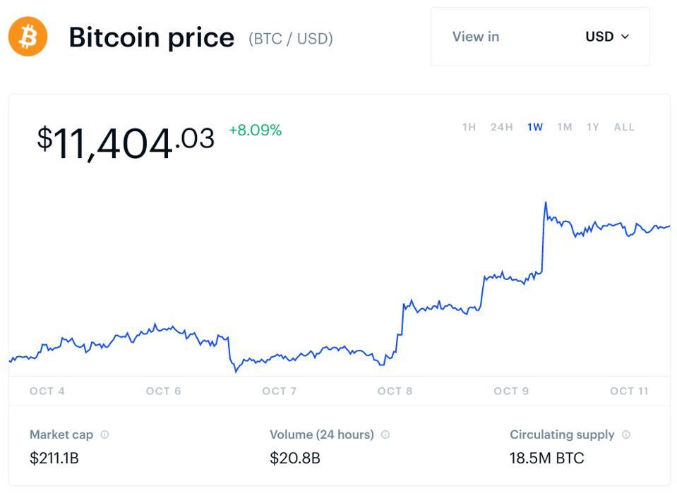 bitcoin, bitcoin price, Trump, Biden, Chamath Palihapitiya, Facebook, dollar, chart