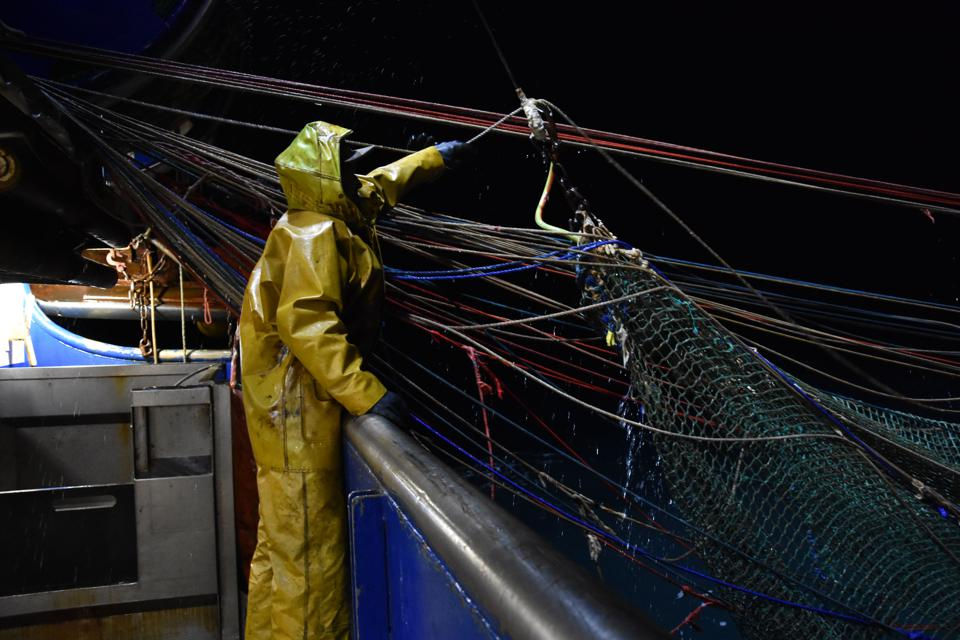 Fishermen fish for mackerel on the trawler ″Le Marmouset III″ in the English Channel on September 28, 2020.