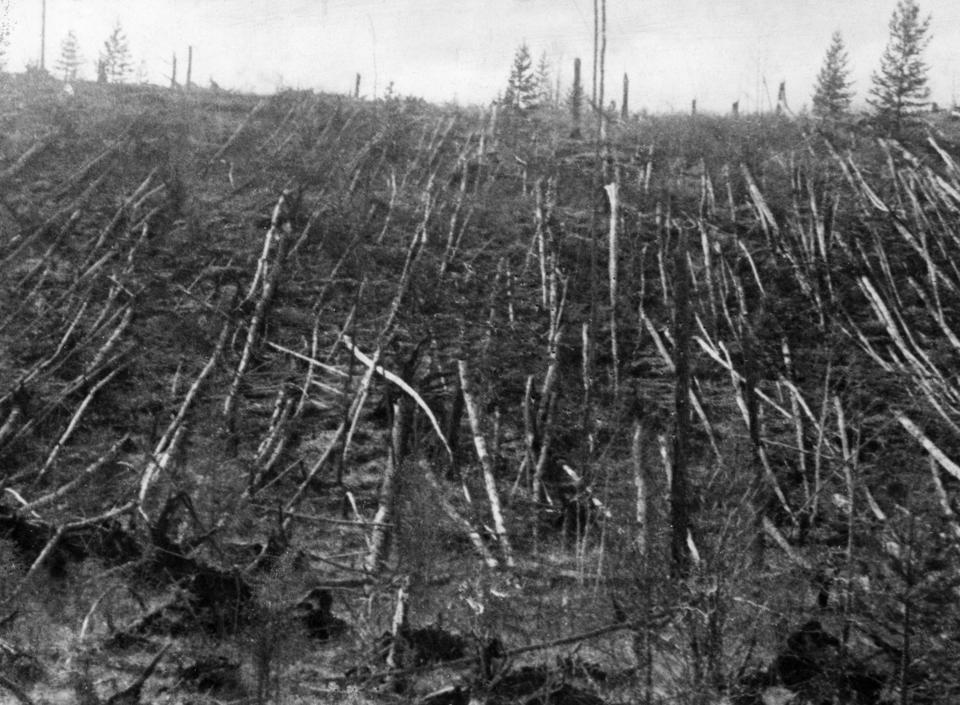 Siberian taiga forest that was flattened by the blast from the Tunguska meteorite near where the meteorite fell in 1908. This picture was taken during professor Leonid Kulik's 1938 expedition to investigate the event.