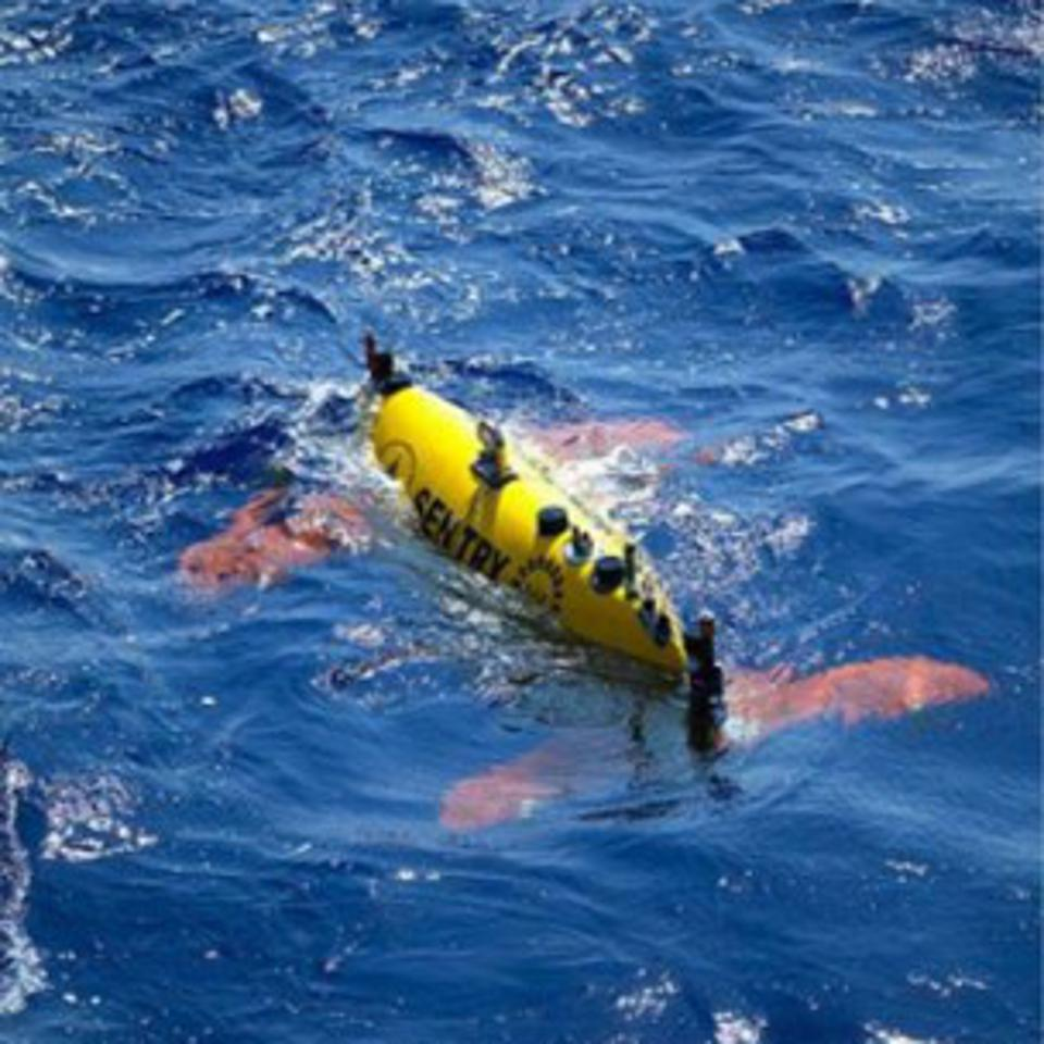 Ocean robots, such as the Sentry from Woods Hole Oceanographic Institute, helped identify the VDR
