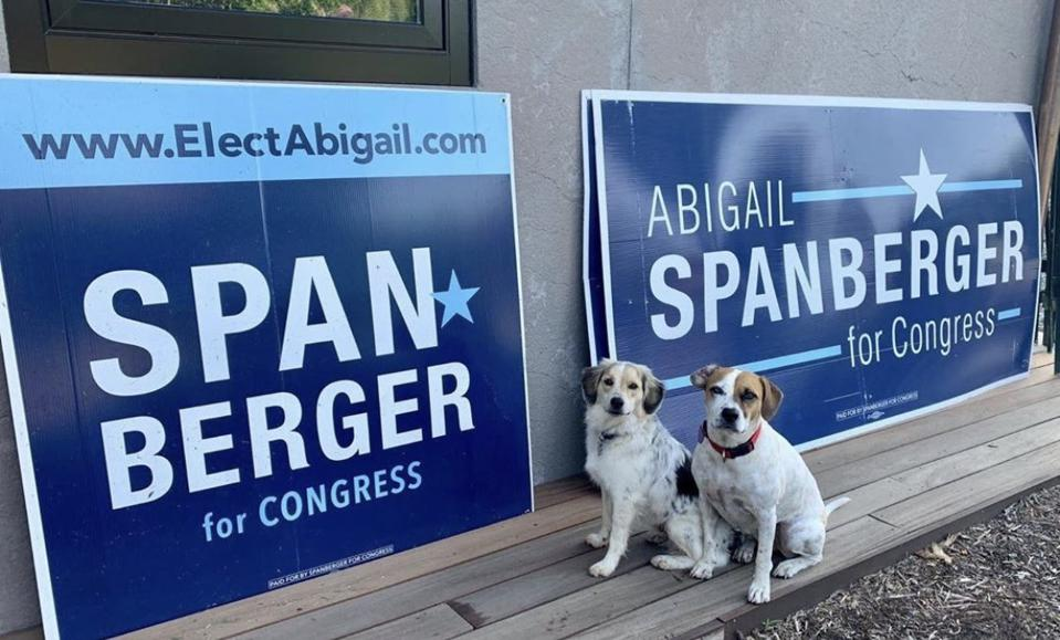 Two dogs sit in front of ″Abigail Spanberger for Congress″ signs.