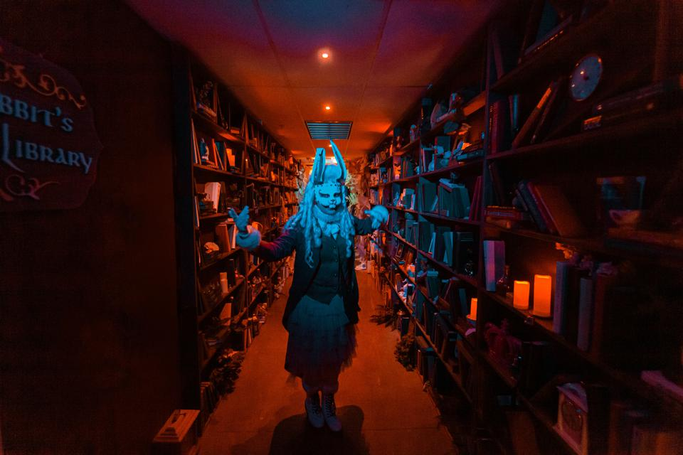 Dark Alice in Wonderland-style imagery from within a library
