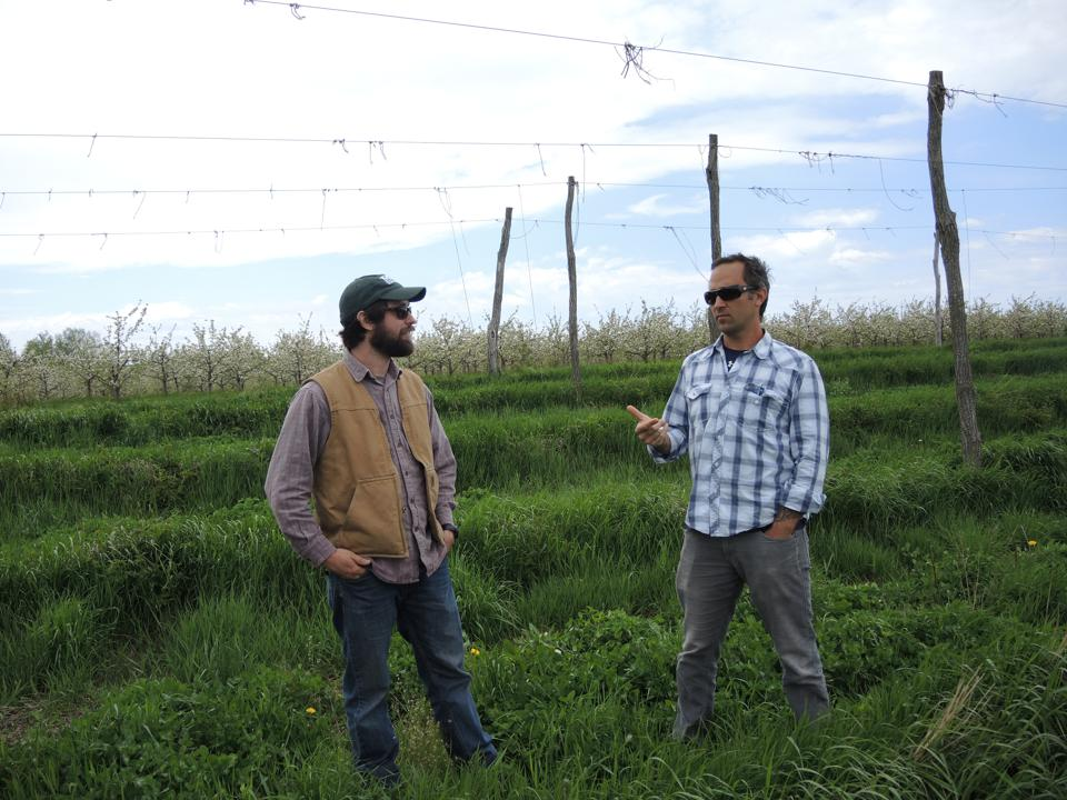 Higgins and Sirrine at MSU, discussing hop diseases that affect craft beer in Michigan.