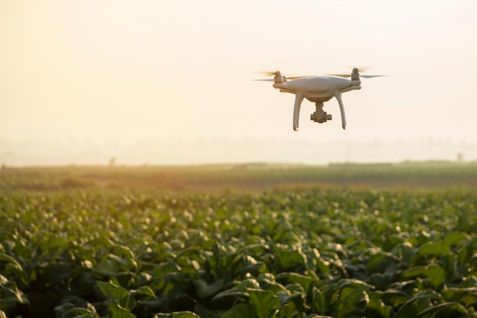 Drone Flying Over Plants On Field