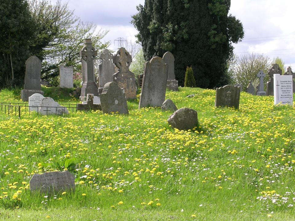 Old tomb stones
