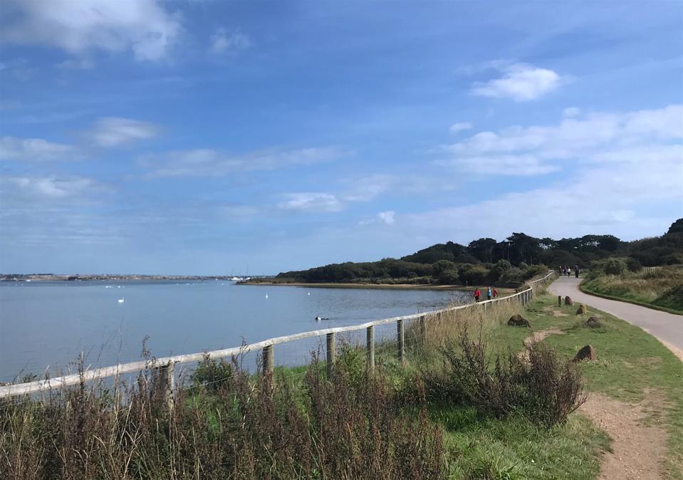 walking trail beside sea