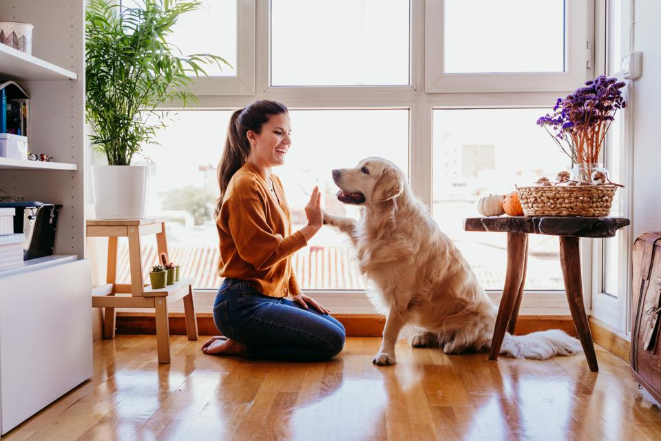 Pet Owners Are Turning To Subscription Services—Here's Why