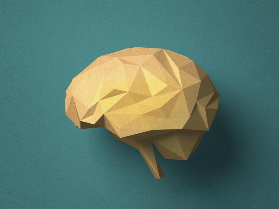Paper craft Brain
