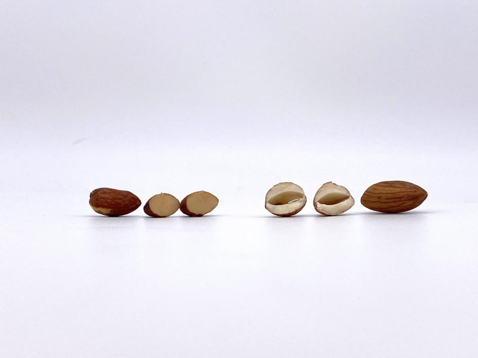Sprouted (Left) vs. Unsprouted (Right) almonds.