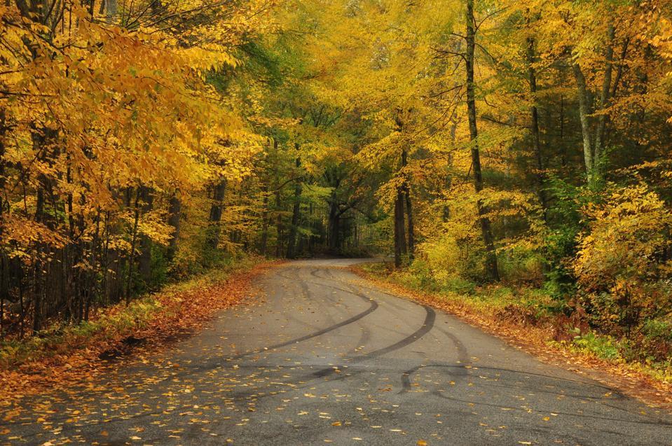 Fall colors in rural Rhode Island